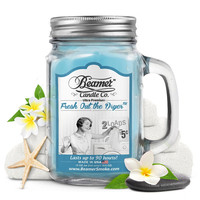 FRESH OUT THE DRYER 12oz candle