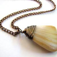 Yellow Seashell Jewelry - Copper Chain Natural Sea Shell Necklace Beach Pendant Jewelry Clam Shell