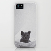Kitten under the sheets iPhone & iPod Case by Deniz Erçelebi