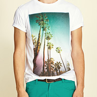 Palm Tree Tee White/Aqua