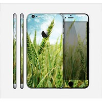 The Sunny Wheat Field Skin for the Apple iPhone 6 Plus