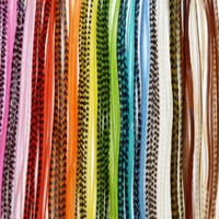 *Feather Mania Real Grizzly and Bold Solid Feather Hair Extensions Mix 10 Feathers