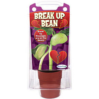 Grow Your Own Break Up Bean