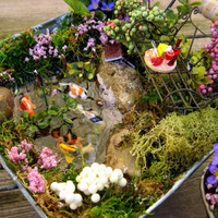Small Fairy Garden Miniature Koi Ponds