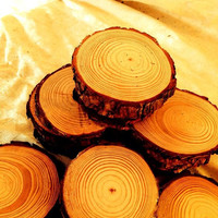 FLASH SALE 55 Pieces 4 Inch White Pine Rounds For 25 Dollars With Free Shipping