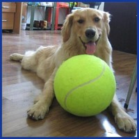 24CM Giant Tennis Ball For Pet Chew Toy. Big Inflatable Tennis Ball Mega Jumbo Pet Toy.